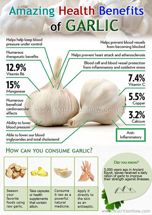 Benefits and Uses of Garlic
