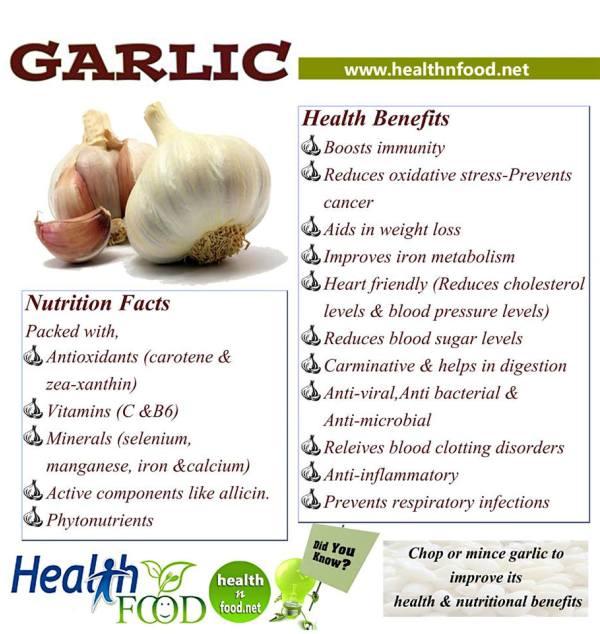 Garlic Benefits Infographic