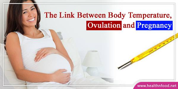 Guide of Pregnancy, Ovulation and Body Temperature