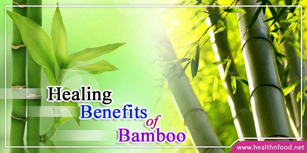 Health Benefits of Bamboo Leaves