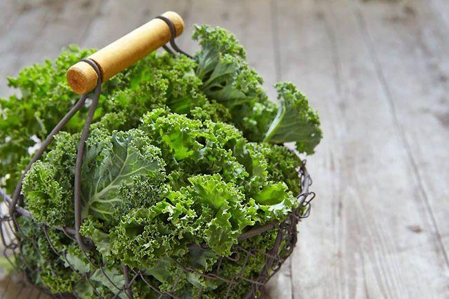 Green Veggie Diet