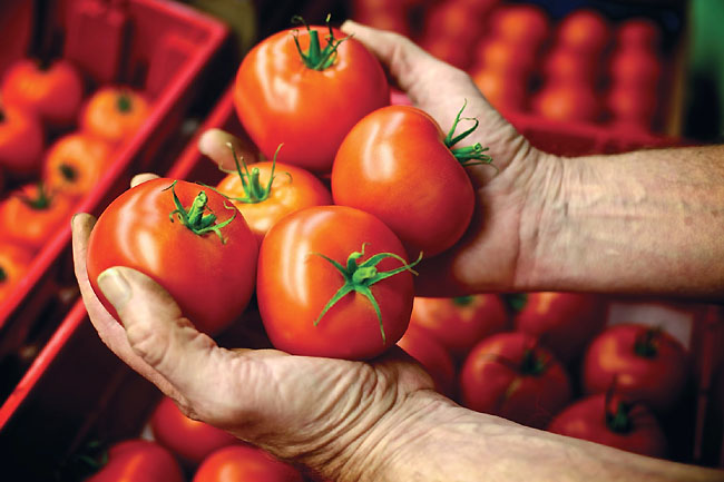 How much Vitamin C in a Tomato