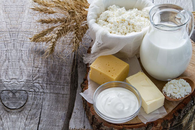 Non Dairy Weight Loss Diet